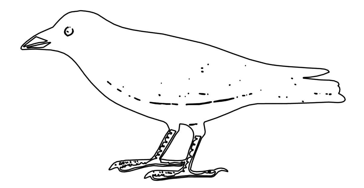 Coloriage oiseau corneille noire - Dessin d oiseau ...